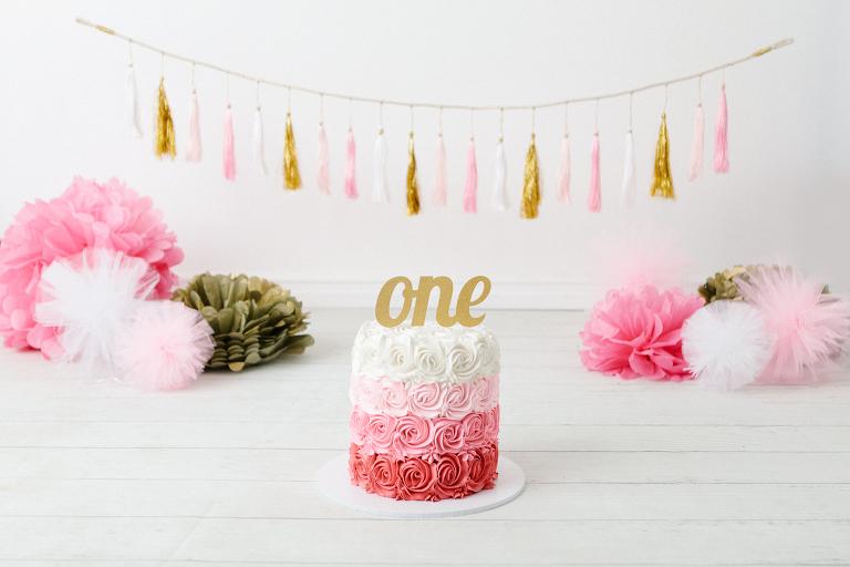 Carine Cake Smash Photographer
