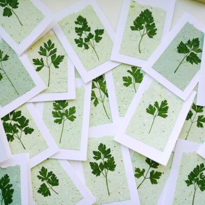Grow a Card