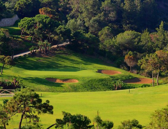 Chaparral Golf Club – Christmas Special Offer