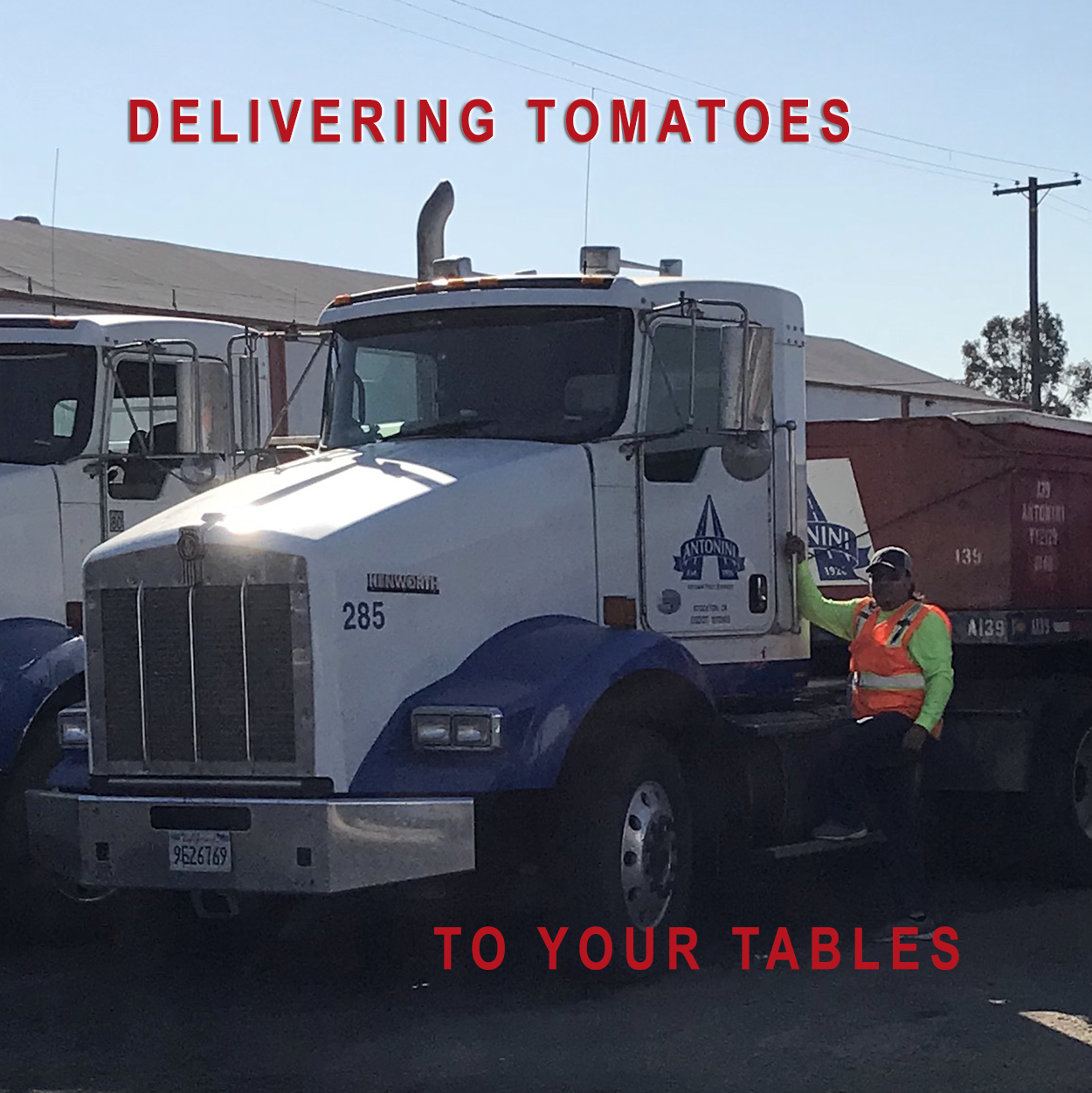 """SEASONAL TRUCK DRIVER IN MODESTO TERMINAL WITH TEXT """"DELIVERING TOMATOES TO YOUR TABLES"""""""