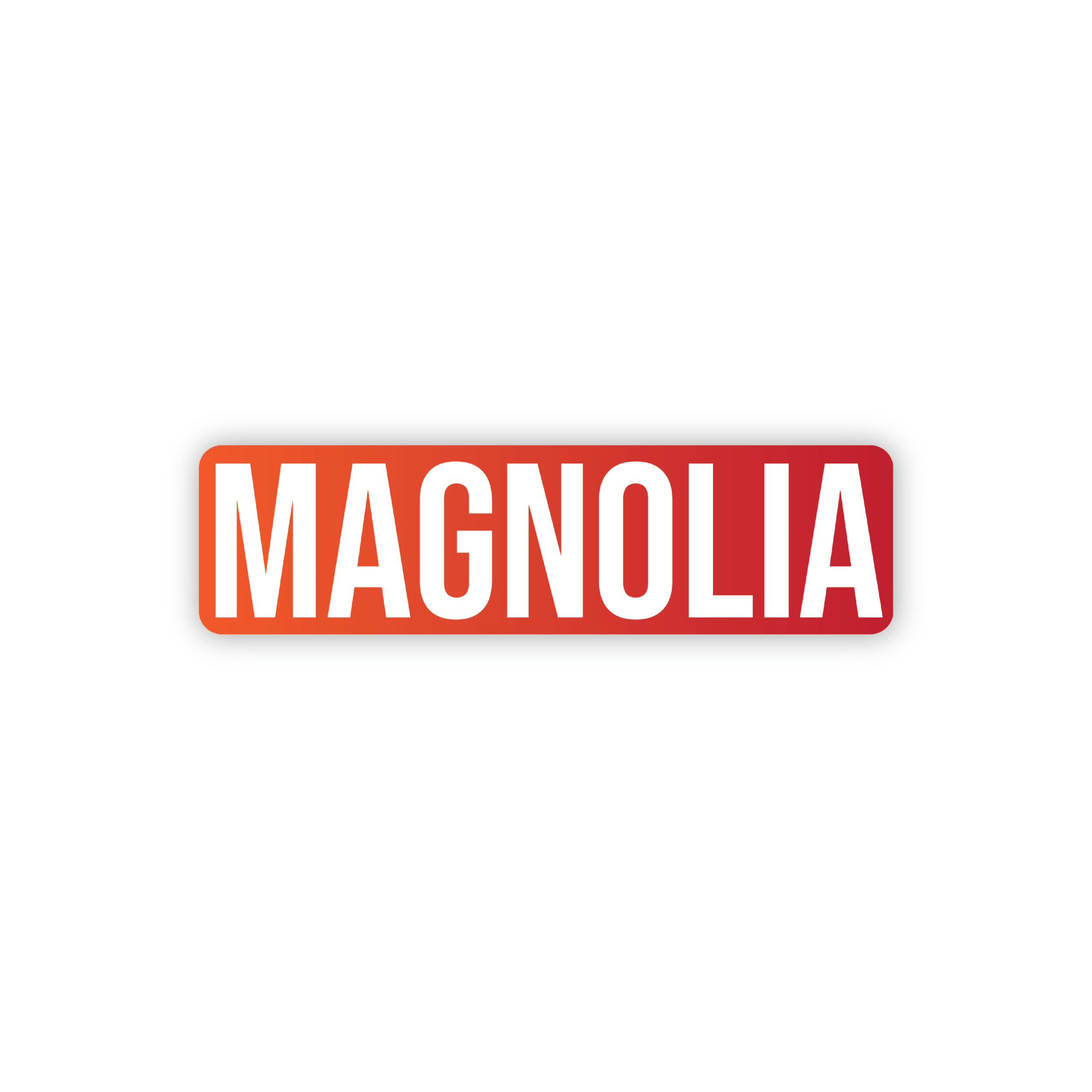 fi-es mangolia erp software solution