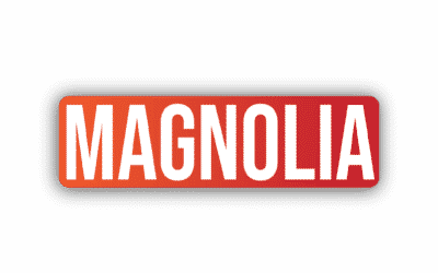 FI-ES Magnolia V 10.1 Patch Notes