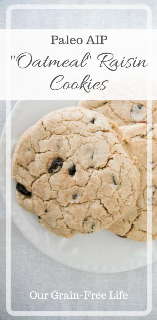 paleo oatmeal raisin cookies