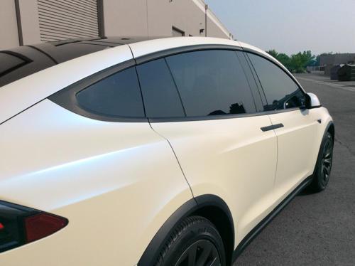 Tesla Chrome Delete In Carbon Fiber