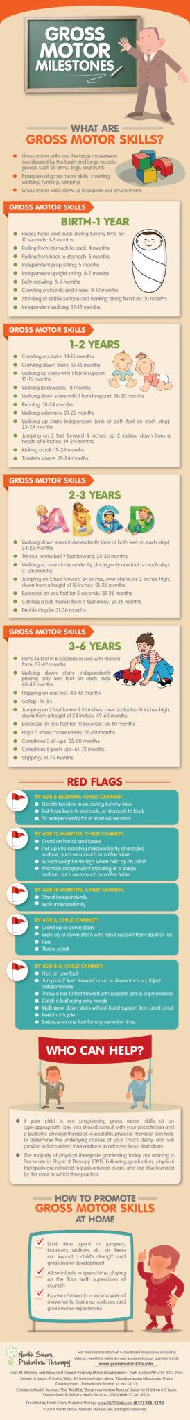 gms milestones infographic