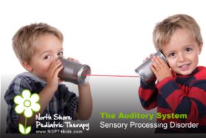 Sensory processing disorder auditory system