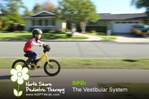 Sensory Processing Disorder the vestibular system