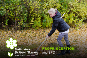 SPD Proprioceptive system