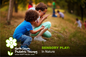Sensory Experiences in Nature