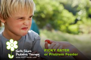 picky eater or problem feeder