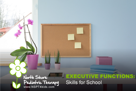 Executive Functioning Skills or School Success