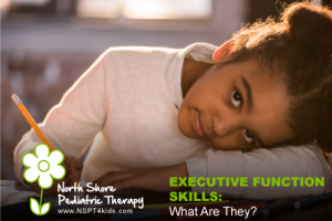 Executive Function Blog