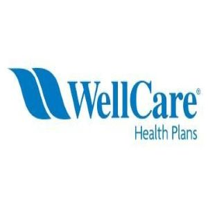 CMS Well Care Insurance Logo