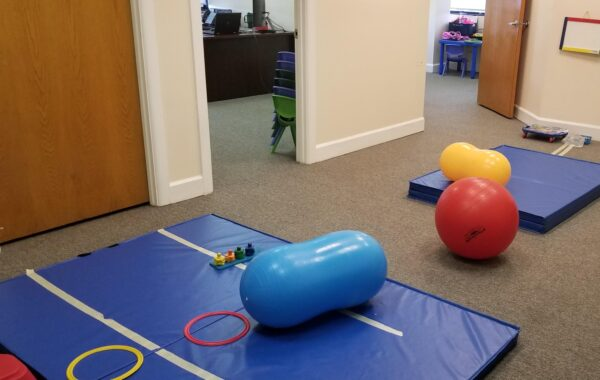 Occupational Therapy Services Gym
