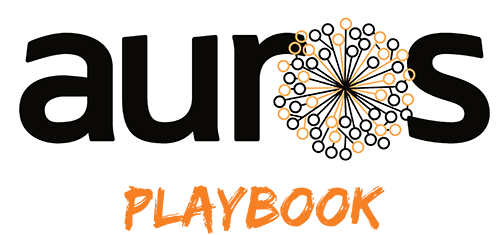 Auros Playbook