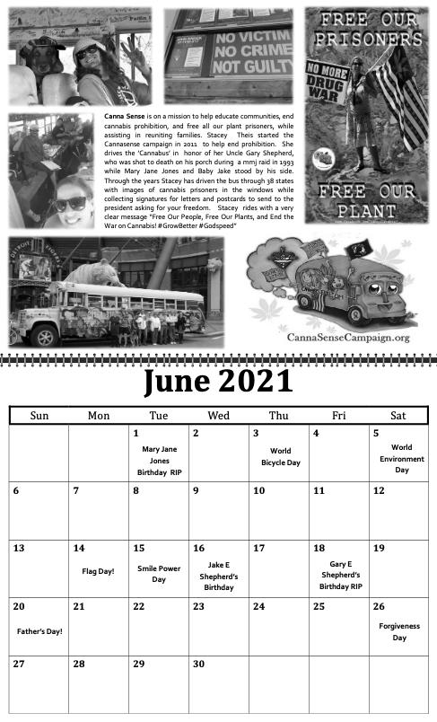 freedom grow forever calendar june 2021