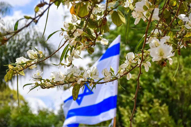 israeli flag Spring