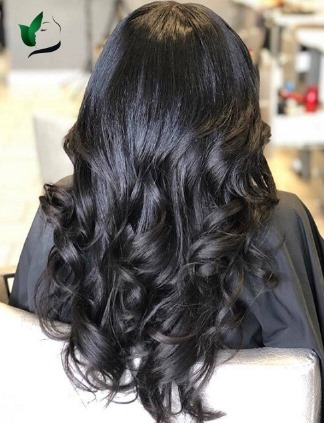 Spanish/French Curl Collections