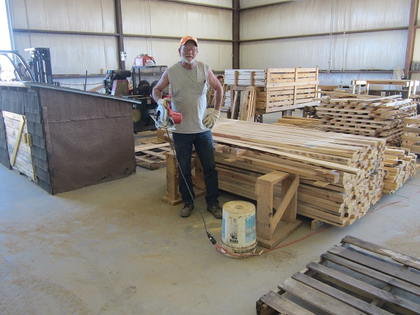Walt building Pallets