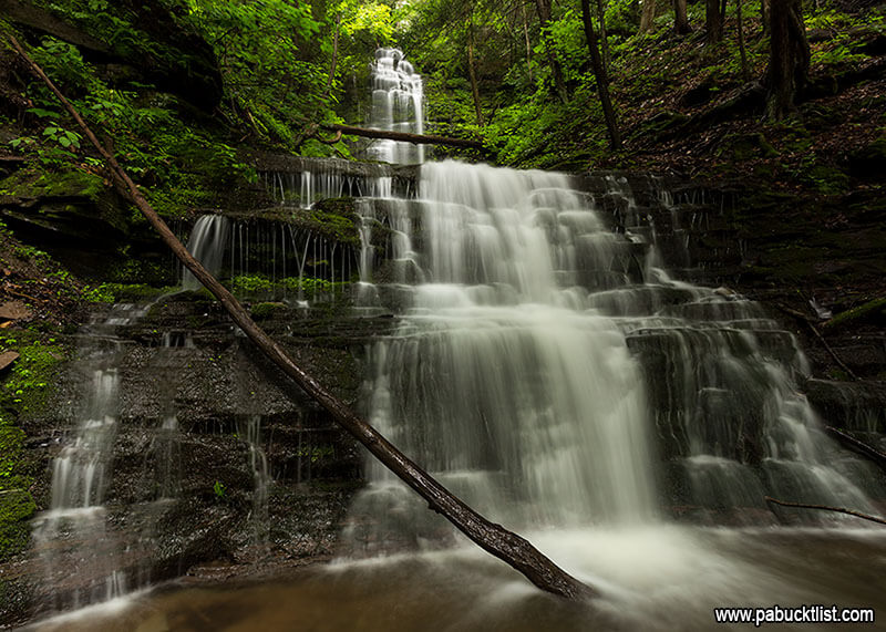 Standing at the bottom of Chimney Hollow Falls on a summer morning.