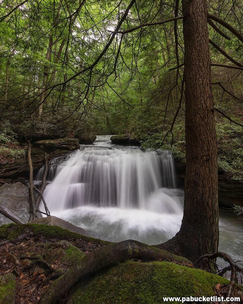 Lower Jonathan Run Falls at Ohiopyle State Park - Spring 2019.