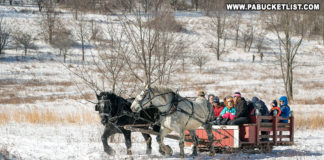 A two-horse open sleigh takes passengers for a ride at Winterfest.