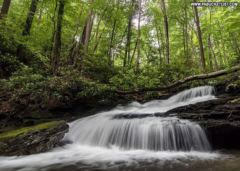 Bruner Run Falls at Ohiopyle State Park.