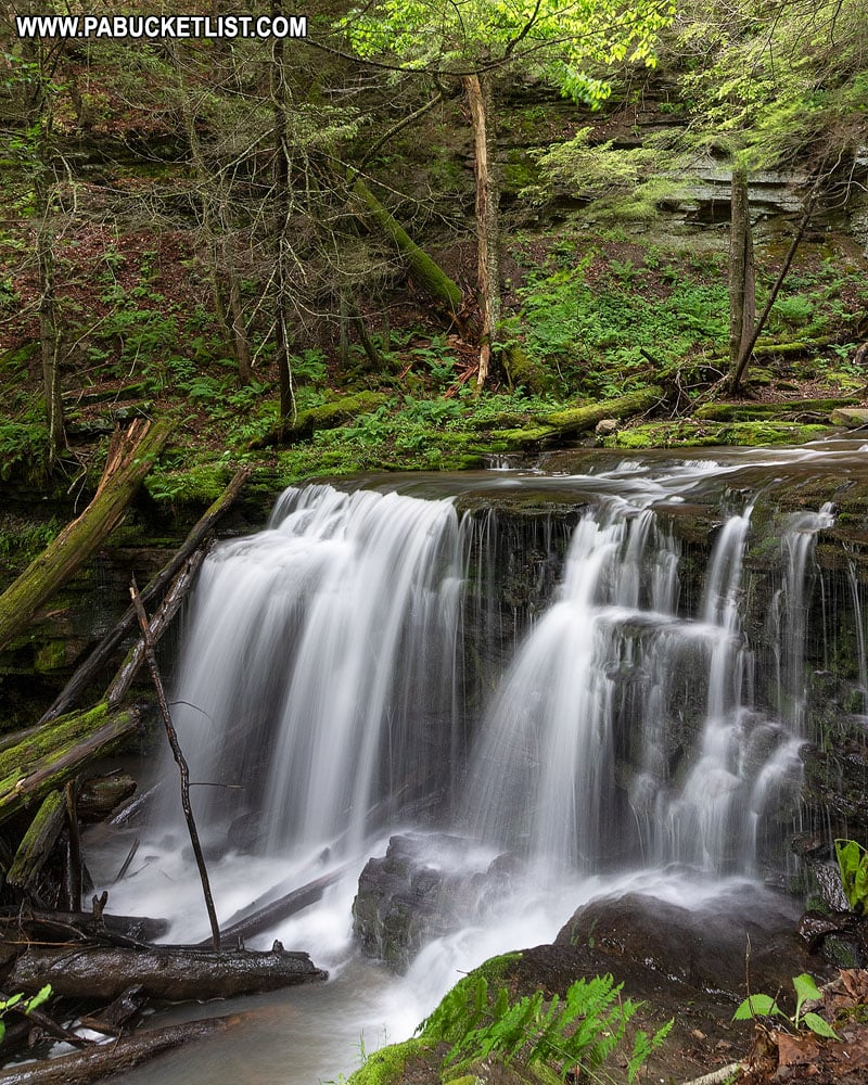 Logjam Falls on Fourmile Run in Tioga County.