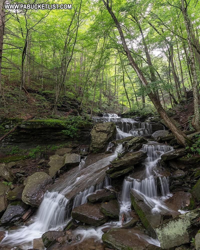 Waterfalls on Little Fourmile Run next to the Turkey Path.