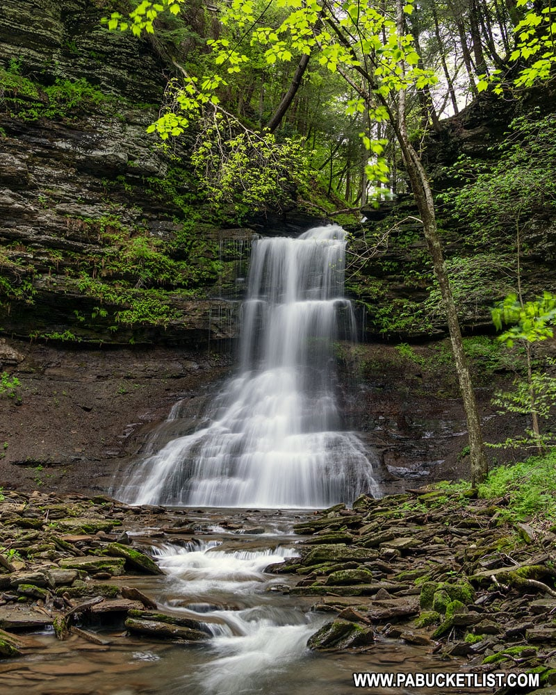 Amphitheater Falls on Campbells Run in Tioga County PA