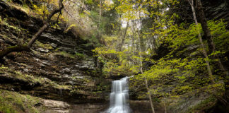 Amphitheatre Falls along Campbells Run in the Pine Creek Gorge Pennsylvania
