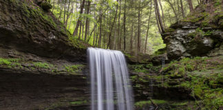 Campbells Run Falls in the Pine Creek Gorge Tioga County Pennsylvania