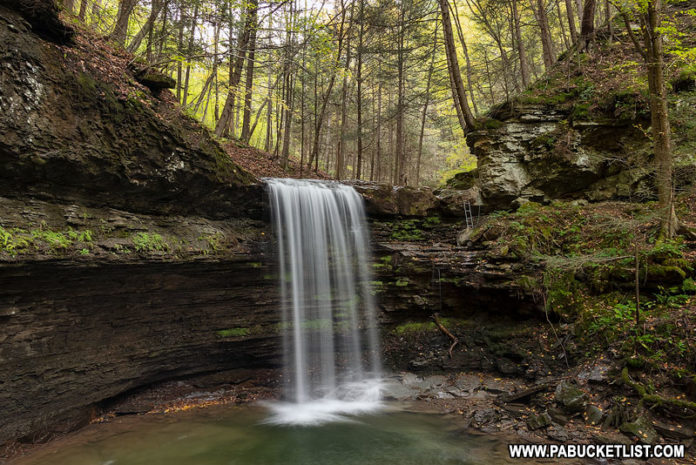 Campbells Run Falls in Tioga County Pennsylvania