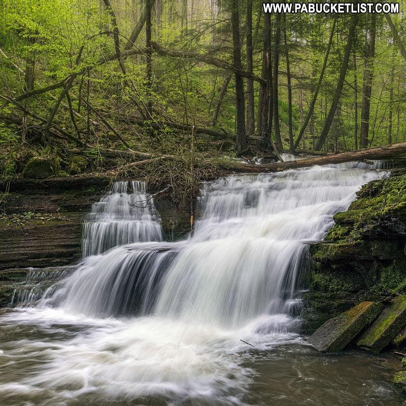 Darling Run Falls in the Tioga State Forest Pennsylvania