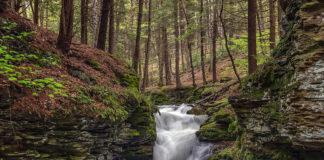 Mine Hole Run Falls Tioga County PA