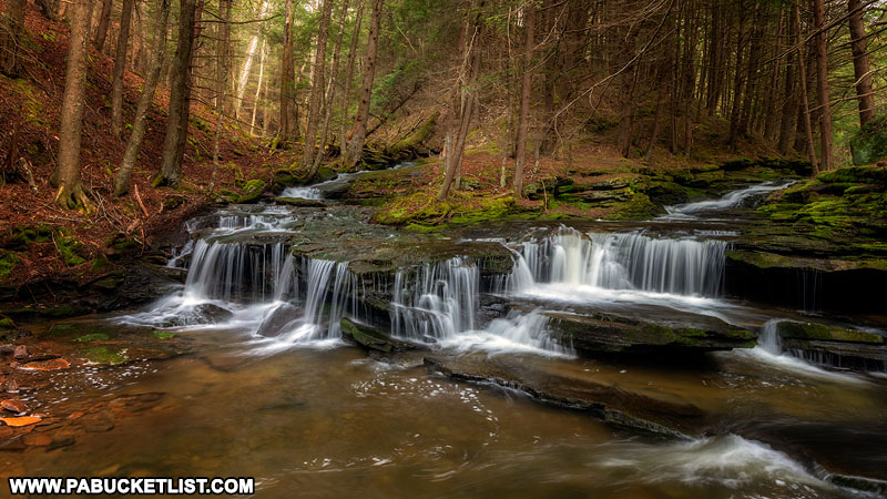 Babb Creek Falls in Tioga State Forest