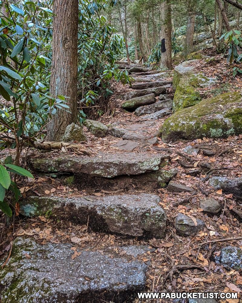 The Falls Trail at Glen Onoko near Jim Thorpe