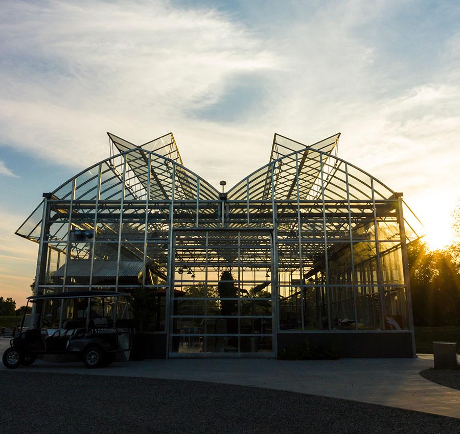 Greenhouse at sunset