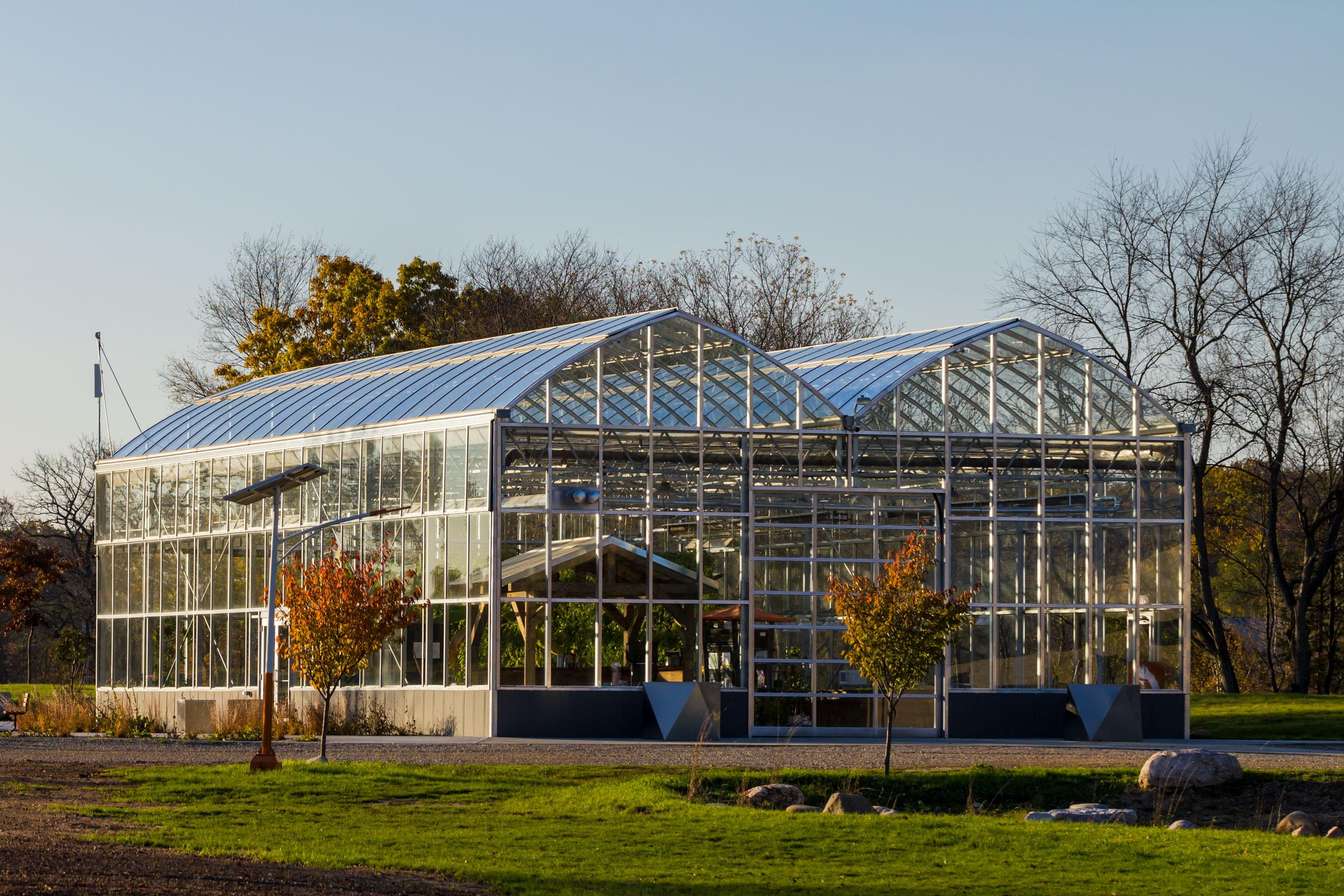 Greenhouse at Robin Hills Farm