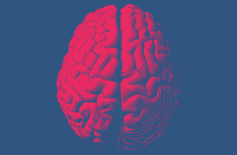 Image of brain against blue background