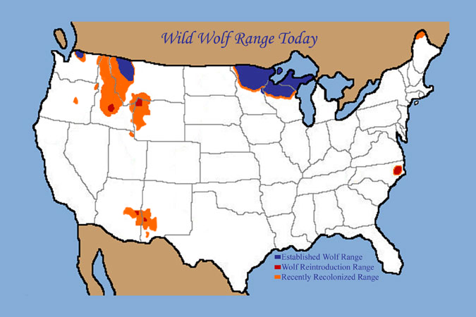 Map showing current wolf range