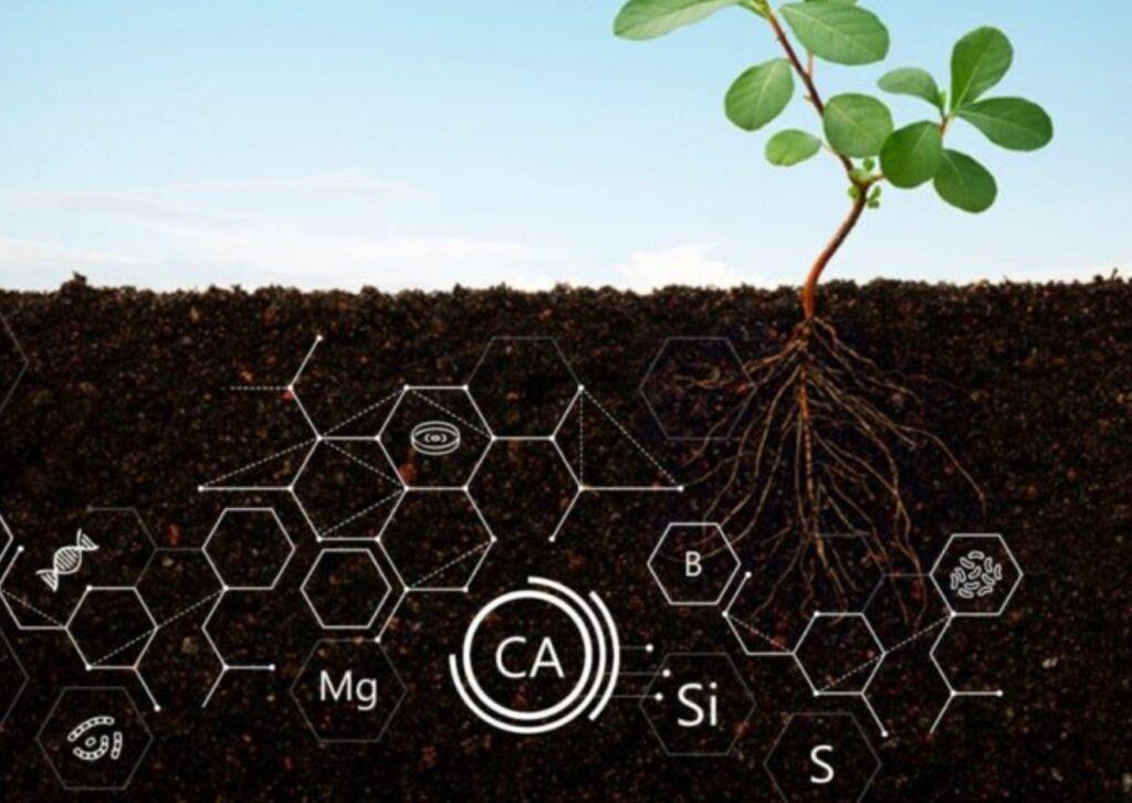 Microbioma do solo