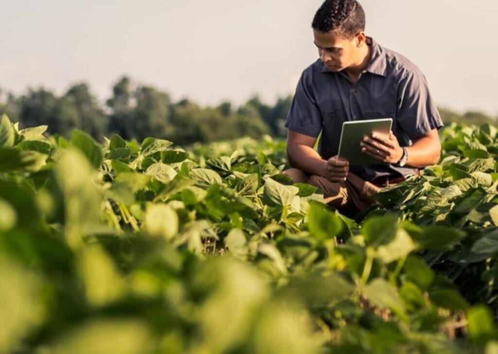 Análise de solo para o trabalho do agrônomo
