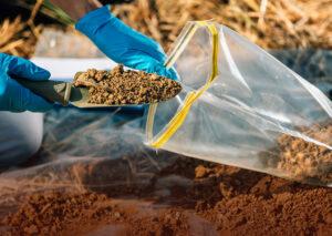 Análise genética do solo orienta posicionamento de produtos biológicos