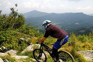 Bike Park & Summit Express