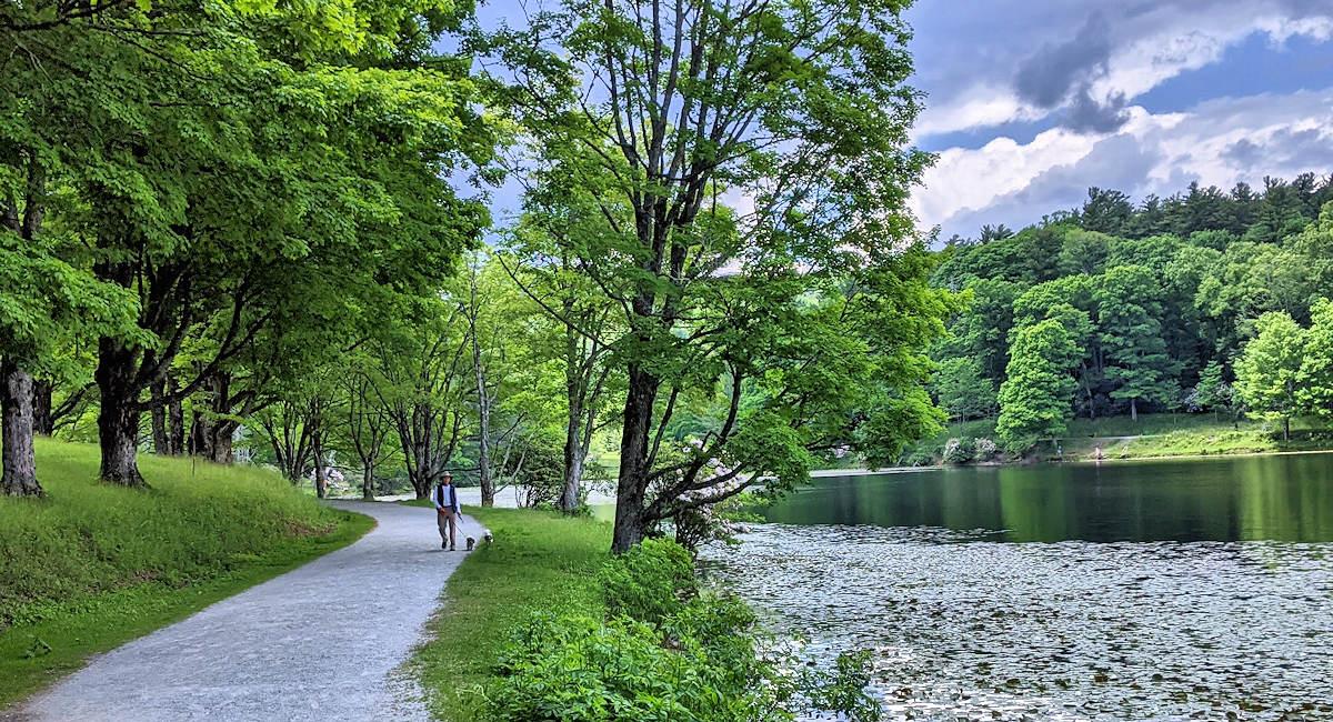 Bass Lake Trail, Moses Cone Park