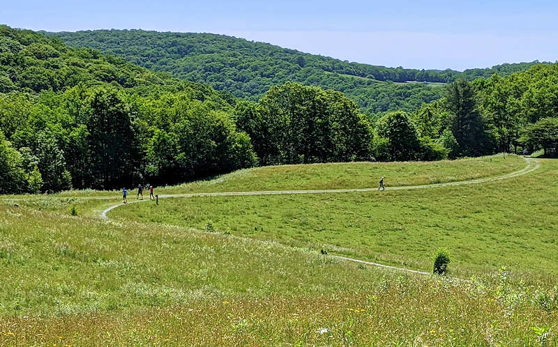 Richmond Mountain Trail