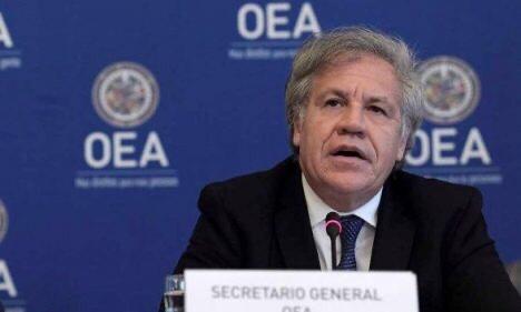L'OEA réitère son soutien à l'organisation des élections haïtiennes