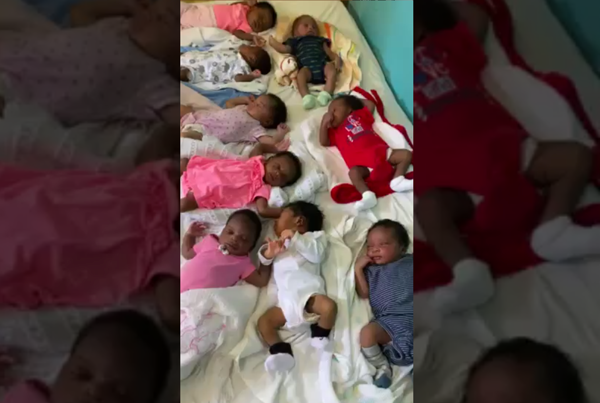 12 Babies, 12 Hours