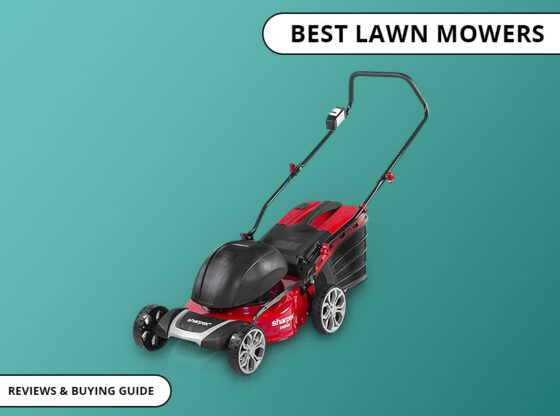 best lawn mower in india